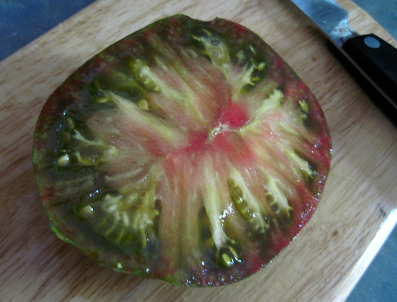 Pink Zebra - Cut in Half